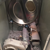 Dryer Before Cleaning