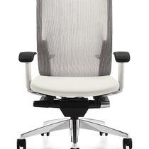 modern professional commercial adjustable office chair with gray mesh back and white seat