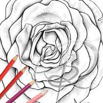 Blüte / Coloring Page - Blume von Sarah Richter