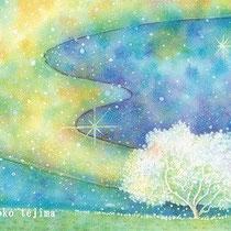 星の木 (水彩・2009制作)