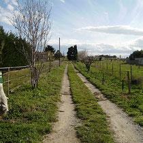 503 chemin de Saint Sauveur: hier geht's 'rein !