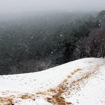 Snowfall on the dune in February 2018