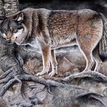 """""""Vieux loup dans les profondeurs de la forêt""""   acrylique sur toile   60x80"""