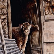 """""""Jeune veau dans l'embrasure de la grange""""   acrylique sur toile   60x80"""