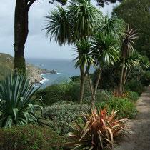 Chygurno Garden, Cornwall, England