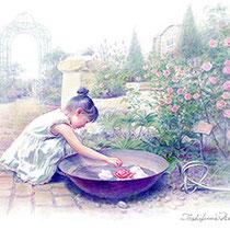 パステル画                           バラの水盤
