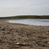 Het strand bij Mohammedia
