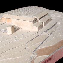 Habitation rurale, Pontillard - Présentation - Carton ondulé - 1/200