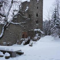 Blick auf die Burgruine Windhaag