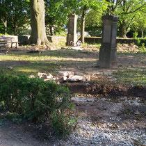 Anlage des neuen Urnenfeldes mit umlaufenden Graben