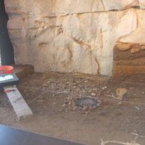 Module de fouilles