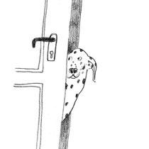 Hund sieht durch Türspalt