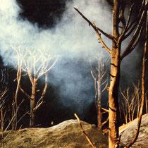 La Fausse Suivante de Marivaux mise en scène de Laurent Laffargue scénographie Eric Charbeau, Philippe Casaban costumes Hervé Poeydomenge lumières Eric Blosse Création: Festival de blase 1997.