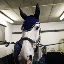 Bonnet bleu marine, liseré argenté, taille cheval grandes oreilles] (ref 112)