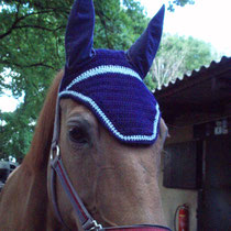 Bonnet bleu marine, liseré bleu clair, taille cheval (ref 14)