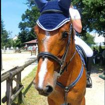 Bonnet bleu marine, liseré blanc, taille cheval (ref 31)