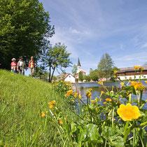 Wandern rund um den Kurpark in Schönse