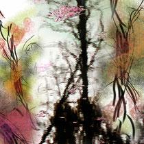 Trasformazione, 2014, Stampa diretta su forex, 70 x 100 cm