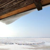 Der Winter hat die Landschaft fest im eisigen Griff. Ein sibirischer Hauch hat das Moor in ein Winterwunderland verwandelt mit vereisten Wasserflächen und verschneiten Streuwiesen. Die Wintersonne lässt die Eiskristalle blitzen.