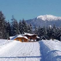 Winterwanderweg in Ramsau am Dachstein in der Urlaubsregion Schladming Dachstein