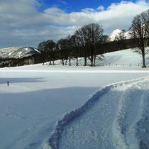 Winterwanderweg vom Landhaus Wieser auf die Hochebene von Ramsau am Dachstein