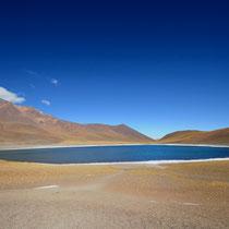 Laguna Miniques [Atacama desert/CHILE]