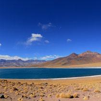 Laguna Miscanti [Atacama desert/CHILE]