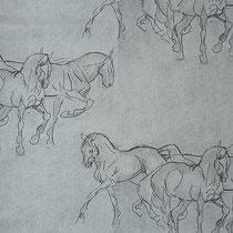 Horses 02, ширина 280 см; состав: 100% хлопок; плотность 239 г/м2; раппорт 32х60 см; направление рисунка по ширине