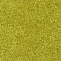Terciopel col/23 (светло-зеленый) ширина 140 см, состав 92% полиестер/ 8% нейлон