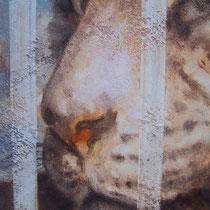 Série animaux - Tigre - huile sur carton 120 x 80 cm - 20.08.2008 (détail)