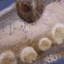 Série animaux - Pieuvre - huile sur carton 120 x 80 cm - 17.08.2008 (détail)