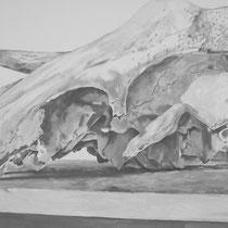 Vache - intérieur-extérieur (((()))) Invisible-Visible (travail en cours, détail) acrylique et graphite sur toile 195 x 130 cm