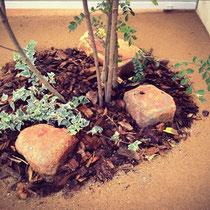 お庭の雑草 草引き 草抜き 雑草対策 颯爽の生えない固まる土 広島 お庭のリフォーム ガーデン ガーデニング