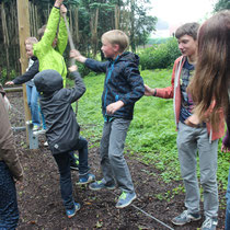 Teambuilding im Niedrigseilgarten.