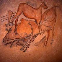 Schillat- Höhle, Tierdarstellungen Details 2