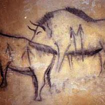 Schillat- Höhle, Tierdarstellungen Details