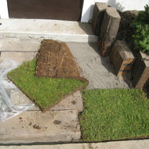 芝生(今はもう草みたいに見えるが)は甲子園と同じ芝生!