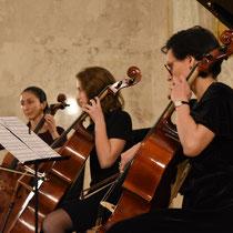 Cellounterricht für Erwachsene