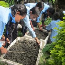 Im Schulgarten von Saraswati
