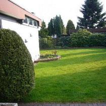 Blick in den großen Garten.