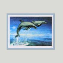 Nr.12/14  Delfin  Aquarell auf Fin Art Büttenspezial-Papier 60x50cm inkl. Karton- Passepartout   € 280,-
