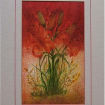 Nr.99/05 Lilie  Aquarell auf Büttenspezialpapier Fin Art  70x50 cm inkl. Karton - Passepartout  € 260.-