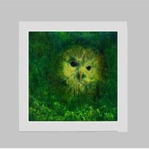 13/3  Mischt.  auf   Büttenspezialpapier  Fin Art   31x31cm inkl. Karton- Passepartout  € 150,-