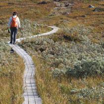Bild: Wanderweg auf den Dundret