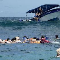 Bild: Schnorcheln auf Islas de Rosario