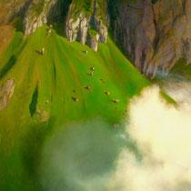 NEBEL IM STEILHANG, 2003, 100 cm x 120 cm, Eitempera und Öl auf Leinwand