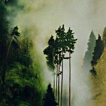 NEBELHARFE, 2002, 100 cm x 120 cm, Eitempera und Öl auf Leinwand