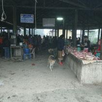 Auch Hunde lieben die Fleischabteilung