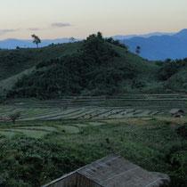 Reisfelder der Lahu