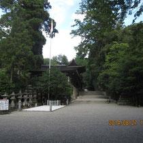 石上神宮は森閑とした森と繋がっている。